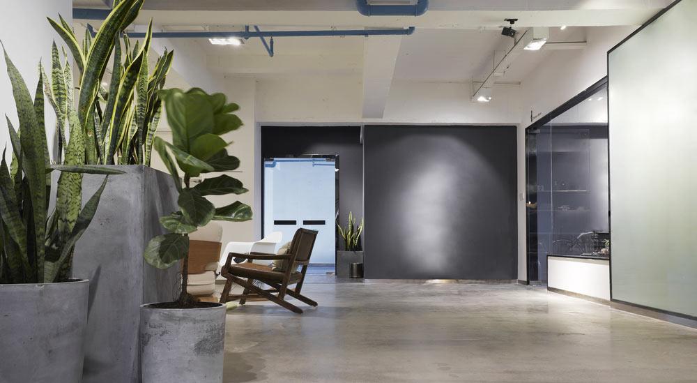kontor med växter